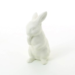 BISCUIT 8114B LAPIN
