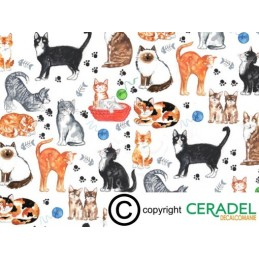 CAT CHINTZ DIM.50X70