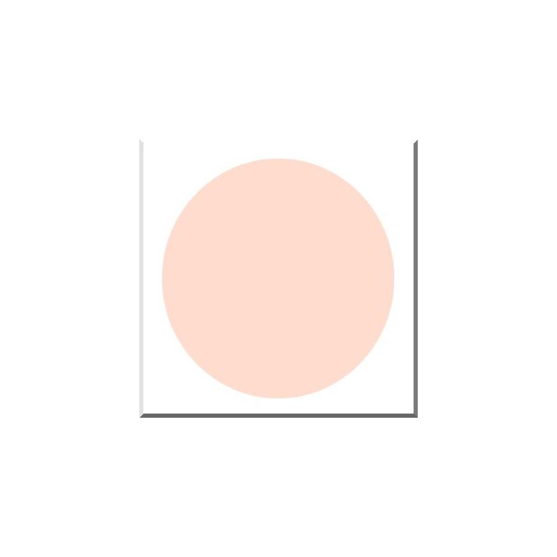 CERA 362 ROSE PASTEL Opaque Plombeux