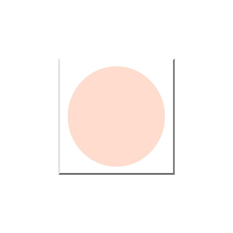 CERA 362 ROSE PASTEL Opaque Plombeux