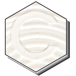 CTP 100 COUVERTE (PB)