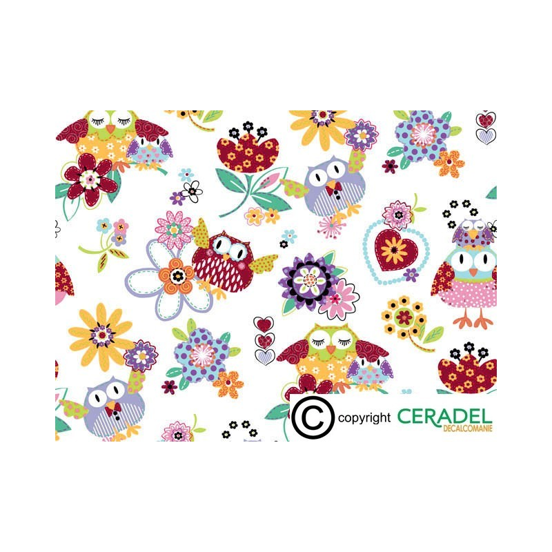 HOOT CHINTZ DIM.50X70
