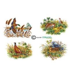 GIBIERS PLUMES Série de 4 motifs